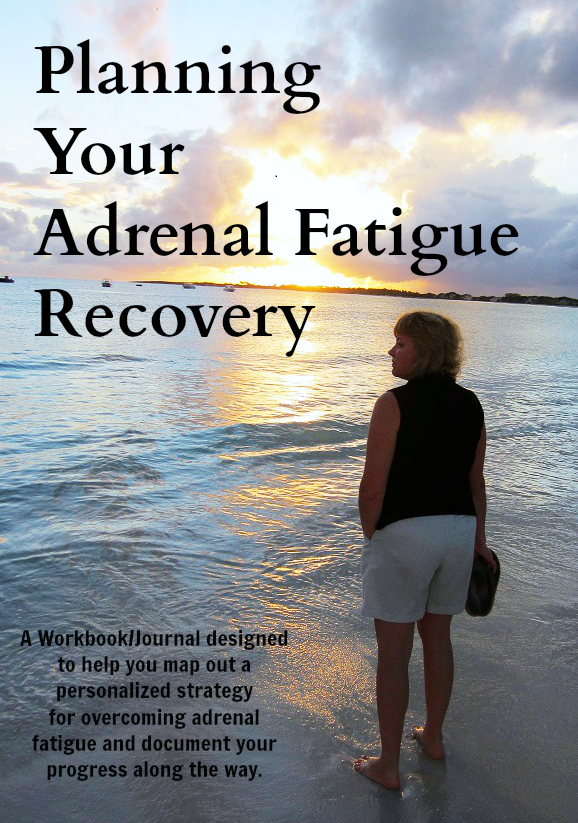 planning your adrenal fatigue recovery workbook
