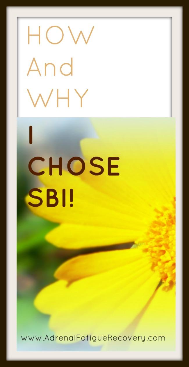 SBI review
